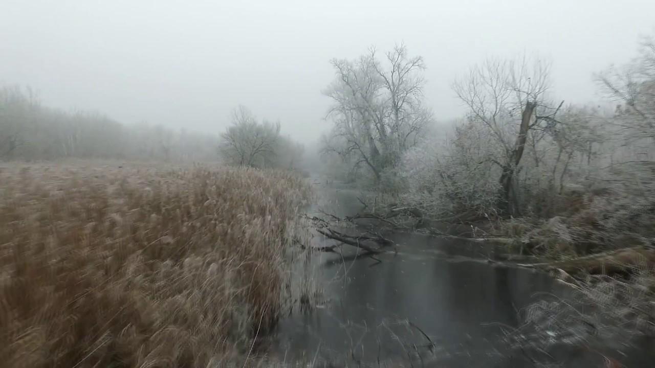 Bačka Palanka zimi – u ljubavi sa prirodom