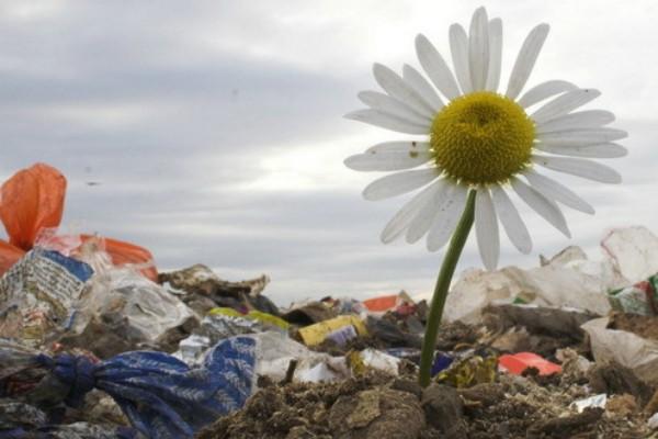 Kako će se utrošiti 40 miliona za zaštitu životne sredine?