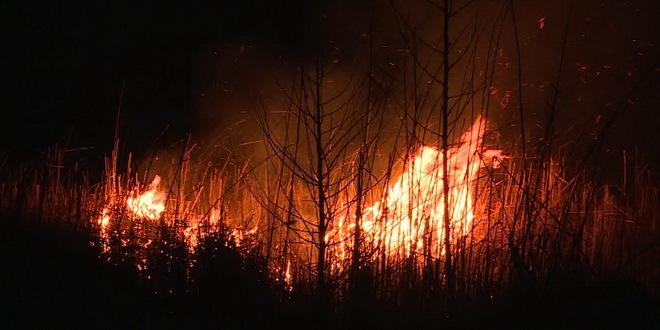 Požar u Parku prirode Tikvara