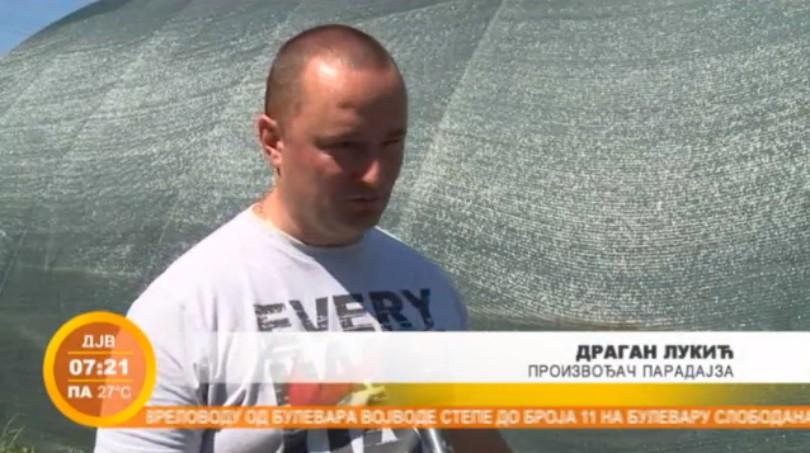 Dragan Lukić: Kako zaraditi u plastenicima? (VIDEO)