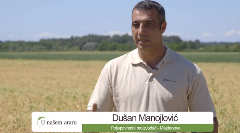 Dušan Manojlović: Zašto sejem grašak u Mladenovu? (VIDEO)
