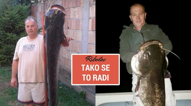Bačkopalanački ribolovci iz Dunava vade somove od 35 kila
