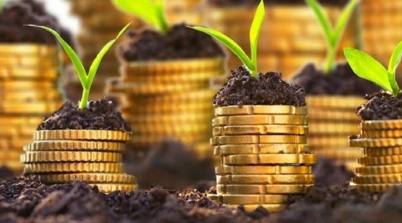 Povoljni krediti za razvoj poljoprivrede – RFAP Vojvodine