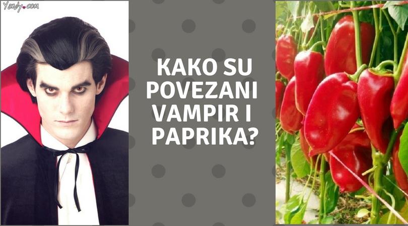 Srpske reči koje ceo svet razume