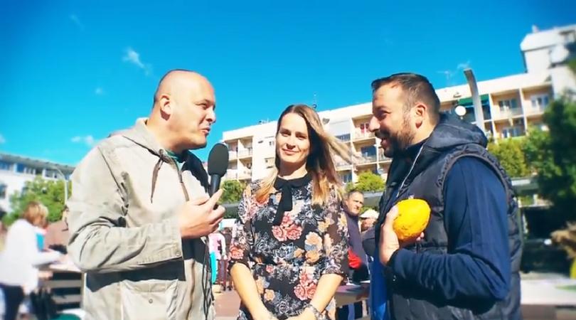Zašto treba posetiti opštinu Bačka Palanka? (VIDEO)