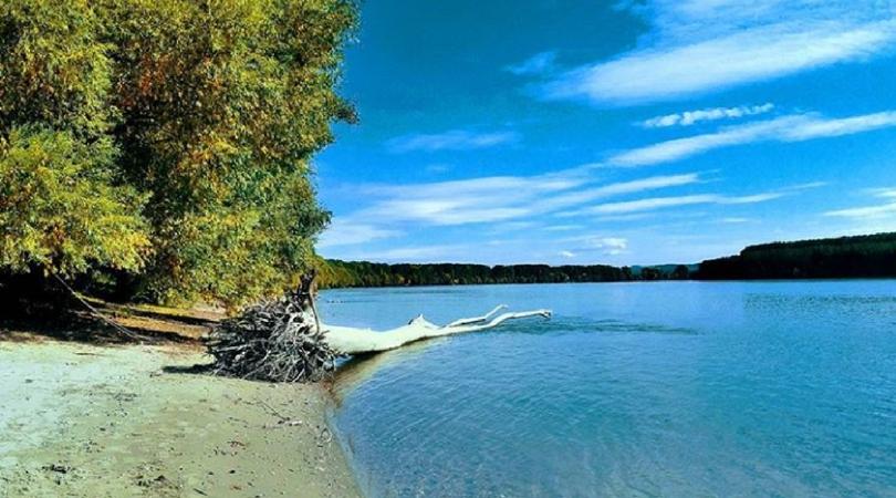 Kad bi Dunav propričao …