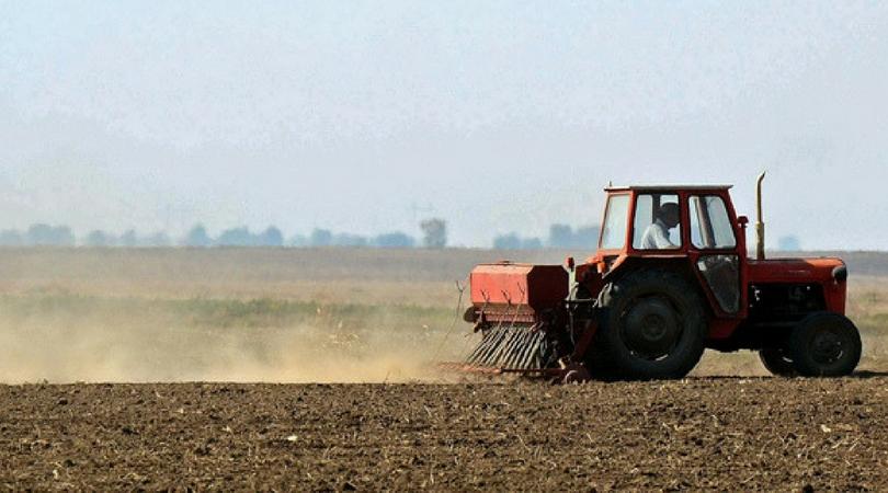 Njive sve manje plodne, Vojvodina bi za pola veka mogla da postane pustinja