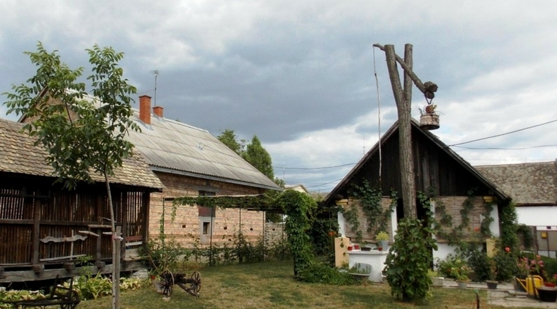 Didina kuća u Baču: povratak u 19. vek