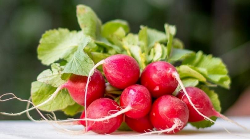 10 razloga zbog kojih treba da jedete rotkvice ovog proleća