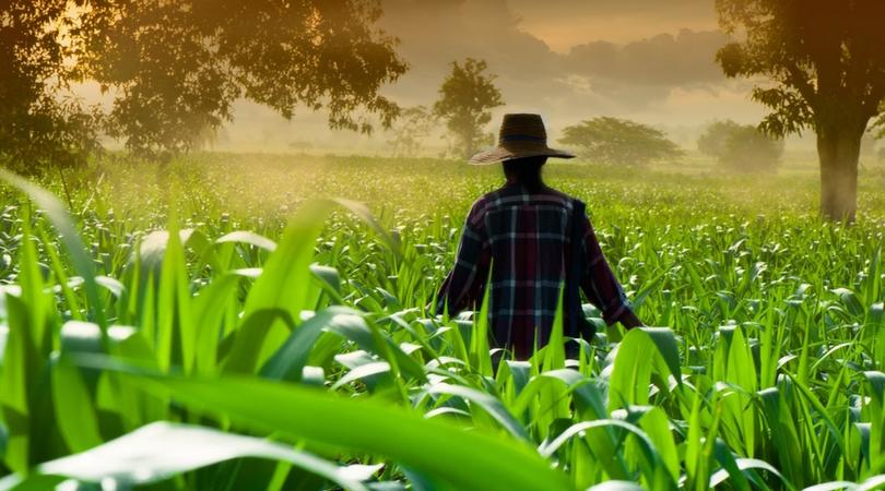 Budućnost je agroekologija