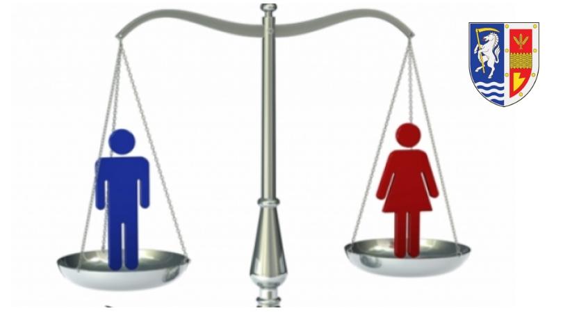 Kakav je položaj žena u opštini Bačka Palanka?
