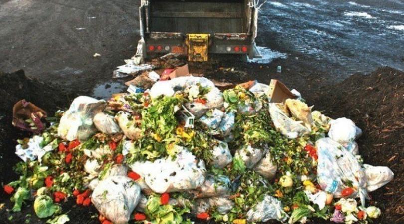Istraživanje: U Srbiji se godišnje baci 250.000 tona hrane