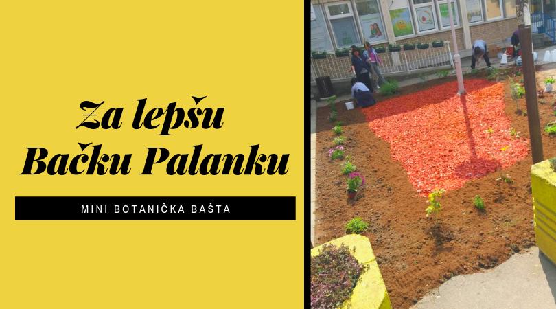 Radnice apoteke napravile mini botaničku baštu u centru Bačke Palanke