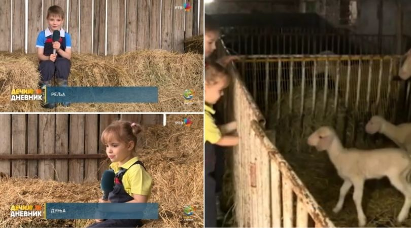 Mali poljoprivrednici iz okoline Bačke Palanke (VIDEO)