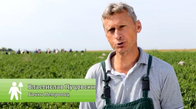 Proizvodnja paprike na otvorenom u Bačkom Petrovcu