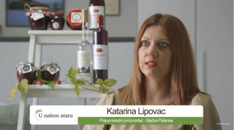 Organska proizvodnja malina u Bačkoj Palanci (VIDEO)
