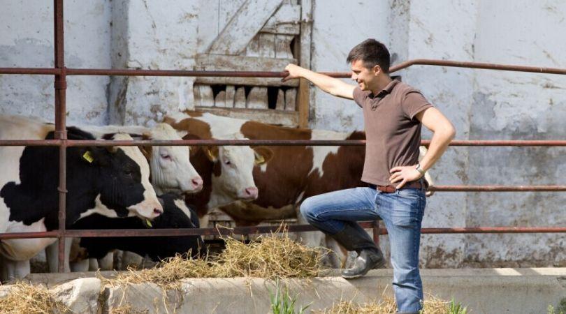 Raspisan konkurs za mlade poljoprivrednike – podsticaji do milion i po