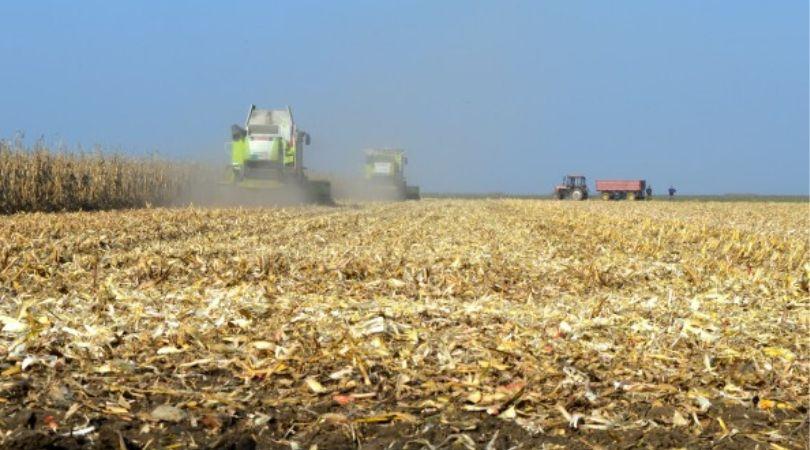 Usvojena uredba o podsticajima u poljoprivredi i ruralnom razvoju