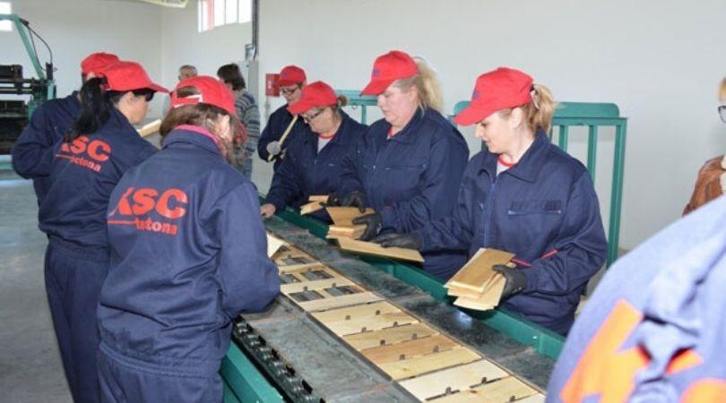Opština Bač istrajna u privlačenju investitora: Zaživeli pogoni paleta, izneverila fabrika trikotaže