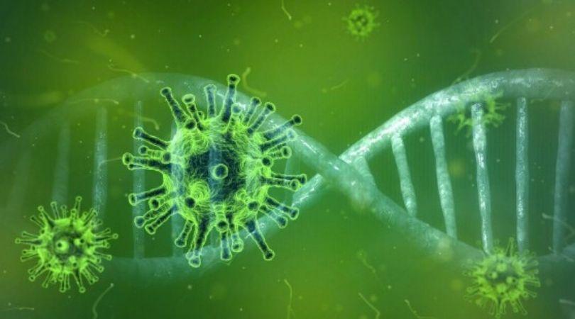 Još osam zaraženih korona virusom u Srbiji, ukupno 97