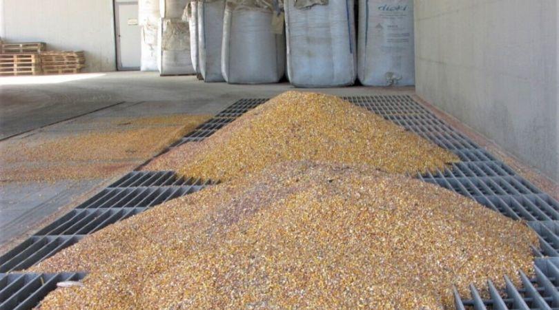 Pošta će poljoprivrednicima besplatno dostavljati seme za prolećnu setvu?