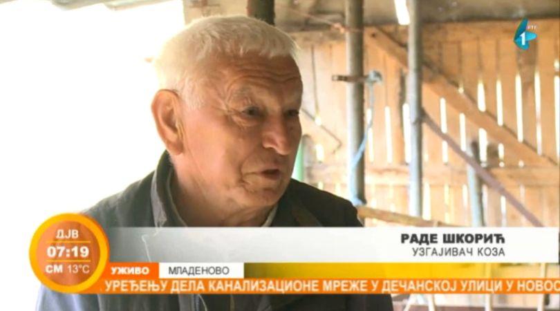 Uzgoj koza – Rade Škorić iz Mladenova (VIDEO)